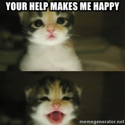 Adorable Kitten - your help makes me happy