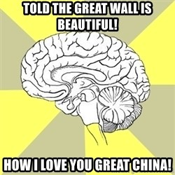 Traitor Brain - told the great wall is beautiful! how i love you great china!