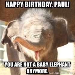 baby elephant - happy birthday, paul! you are not a baby elephant anymore.