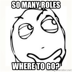 Derp thinking - So Many roles where to go?