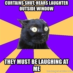 Anxiety Cat - CURTAINS SHUT, HEARS LAUGHTER OUTSIDE WINDOW THEY MUST BE LAUGHING AT ME