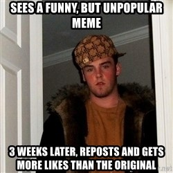Scumbag Steve - sees a funny, but unpopular meme 3 weeks later, reposts and gets more likes than the original