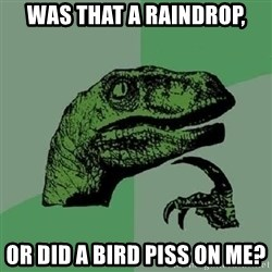 Philosoraptor - Was that a raindrop, Or did a bird piss on me?