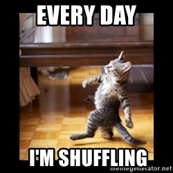cat swag - EVERY DAY  I'm shuffling