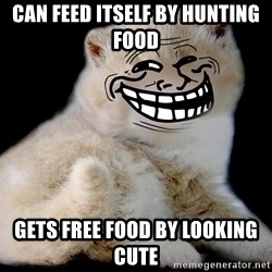 Trollcat - can feed itself by hunting food gets free food by looking cute