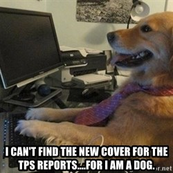 I have no idea what I'm doing - Dog with Tie - I CAN'T FIND THE NEW COVER FOR THE TPS REPORTS....FOR I AM A DOG.