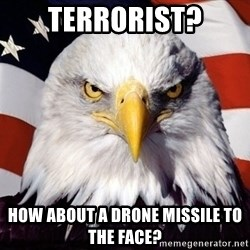 American Pride Eagle - terrorist? how about a drone missile to the face?