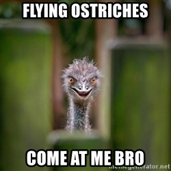 Rapist Ostrich - Flying Ostriches Come at me bro
