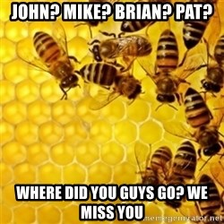 Honeybees - john? mike? Brian? Pat? where did you guys go? we miss you