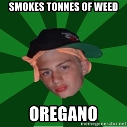 Stonerbro - Smokes tonnes of weed oregano