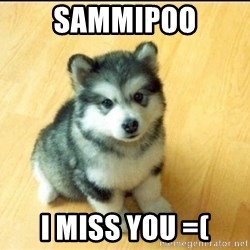 Baby Courage Wolf - sammipoo I miss you =(