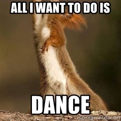 dramatic squirrel - ALl I want to Do is DAnce