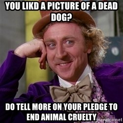 Willy Wonka - You likd a picture of a dead dog? Do tell more on your pledge to end animal cruelty