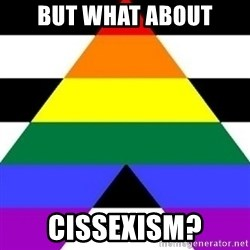 Bad Straight Ally - but what about cissexism?