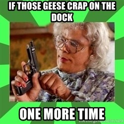 Madea - if those geese crap on the dock one more time