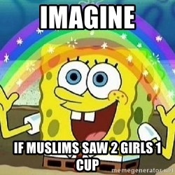 Imagination - imagine if muslims saw 2 girls 1 cup