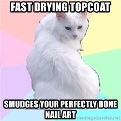 Beauty Addict Kitty - FAST DRYING TOPCOAT SMUDGES YOUR PERFECTLY DONE NAIL ART