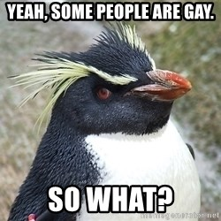 So What Penguin - Yeah, some people are gay. so what?