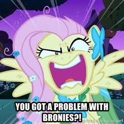 angry-fluttershy - YOU GOT A PROBLEM WITH BRONIES?!
