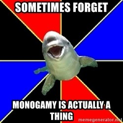 Polyamorous Porpoise - Sometimes Forget Monogamy is actually a thing