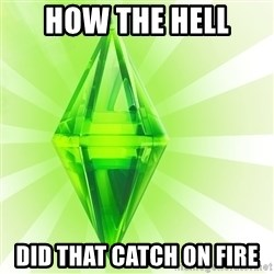 Sims - how the hell did that catch on fire