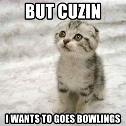 The Favre Kitten - But cuzin  i wants to goes bowlings