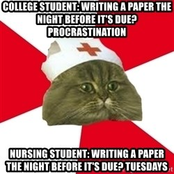 Nursing Student Cat - college student: writing a paper the night before it's due? procrastination nursing student: writing a paper the night before it's due? tuesdays