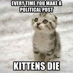 The Favre Kitten - Every time you make a political post kittens die