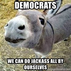 Assumptions Donkey - Democrats We can do jackass all by ourselves