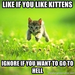 God Kills A Kitten - Like if you like kittens ignore if you want to go to hell