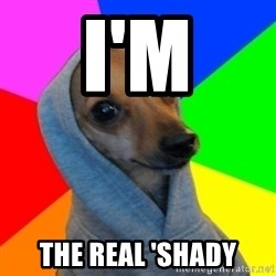 Good Guy Greg's dog - I'm the real 'shady