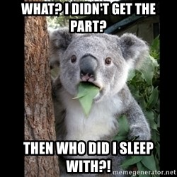 Koala can't believe it - what? i didn't get the part? then who did i sleep with?!