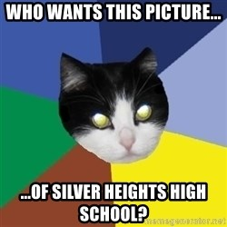 Winnipeg Cat - Who wants this picture... ...of Silver Heights High SchooL?