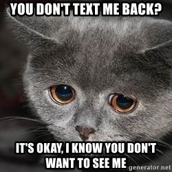Sadcat - You don't text me back? It's okay, i know you don't want to see me