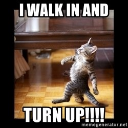 cat swag - I walk in and  Turn up!!!!