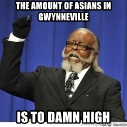 The tolerance is to damn high! - the amount of asians in gwynneville is to damn high