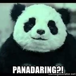 Never say no to Panda -  PANADARING?!