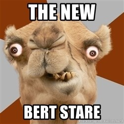 Crazy Camel lol - the new bert stare
