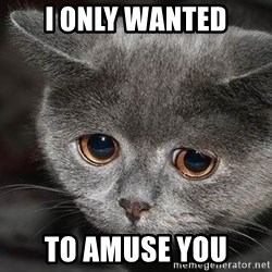Sadcat - i only wanted to amuse you