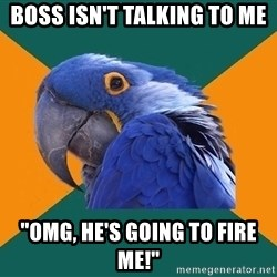 """Paranoid Parrot - boss isn't talking to me """"OMG, HE'S GOING TO FIRE ME!"""""""