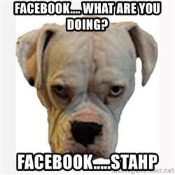 stahp guise - Facebook.... What are you doing? Facebook.....Stahp