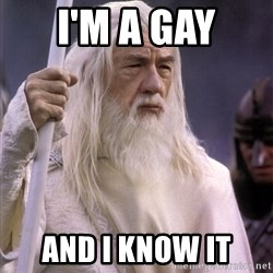 White Gandalf - I'M a gAy And i know it
