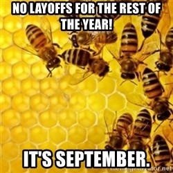 Honeybees - no layoffs for the rest of the year! it's september.