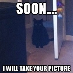 Soon - Soon.... I will take your picture