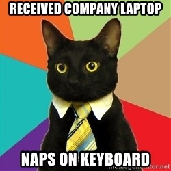 Business Cat - received company laptop Naps on keyboard