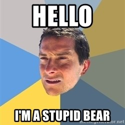 Bear Grylls - HELLO I'M A STUPID BEAR
