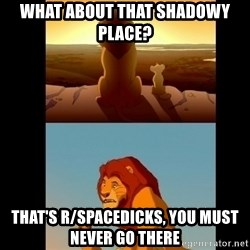 Lion King Shadowy Place - What about that shadowy place?  That's r/spacedicks, you must never go there
