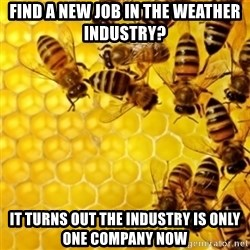 Honeybees - find a new job in the weather industry? it turns out the industry is only one company now