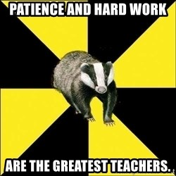PuffBadger - Patience and hard work are the greatest teachers.
