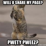 Begging Cat - Will u Share my page? pwety pweez?